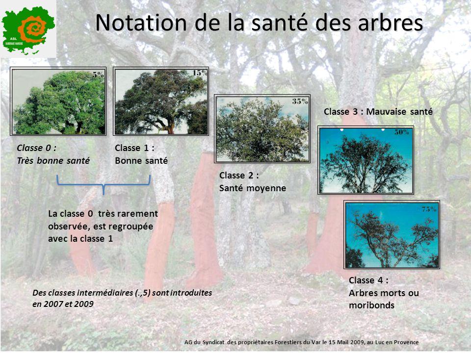 Notation de la santé des arbres