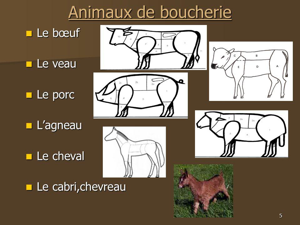 Animaux de boucherie Le bœuf Le veau Le porc L'agneau Le cheval