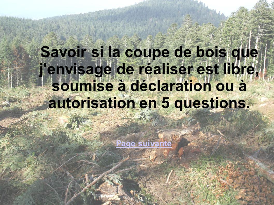 Savoir si la coupe de bois que j envisage de réaliser est libre, soumise à déclaration ou à autorisation en 5 questions.