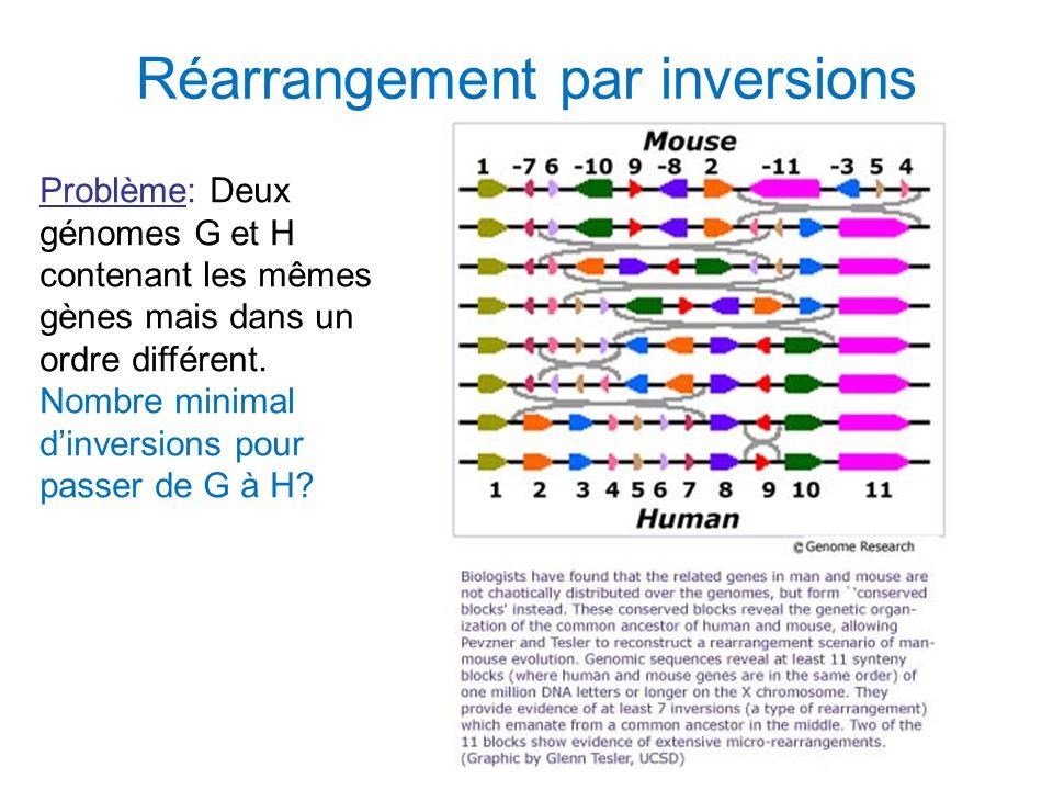 Réarrangement par inversions