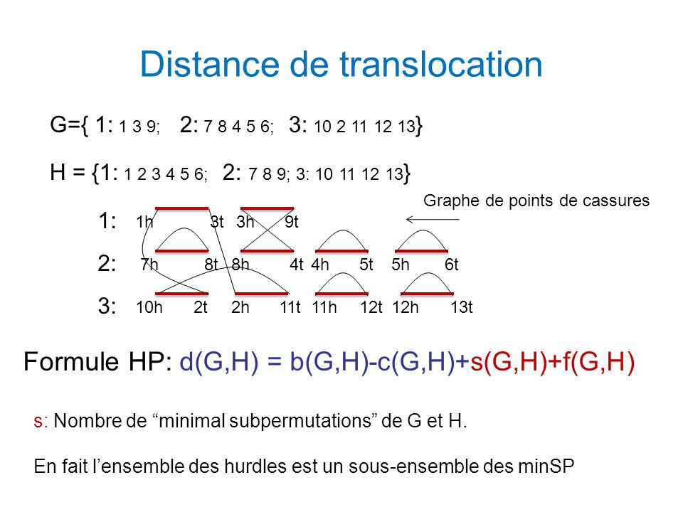 Distance de translocation