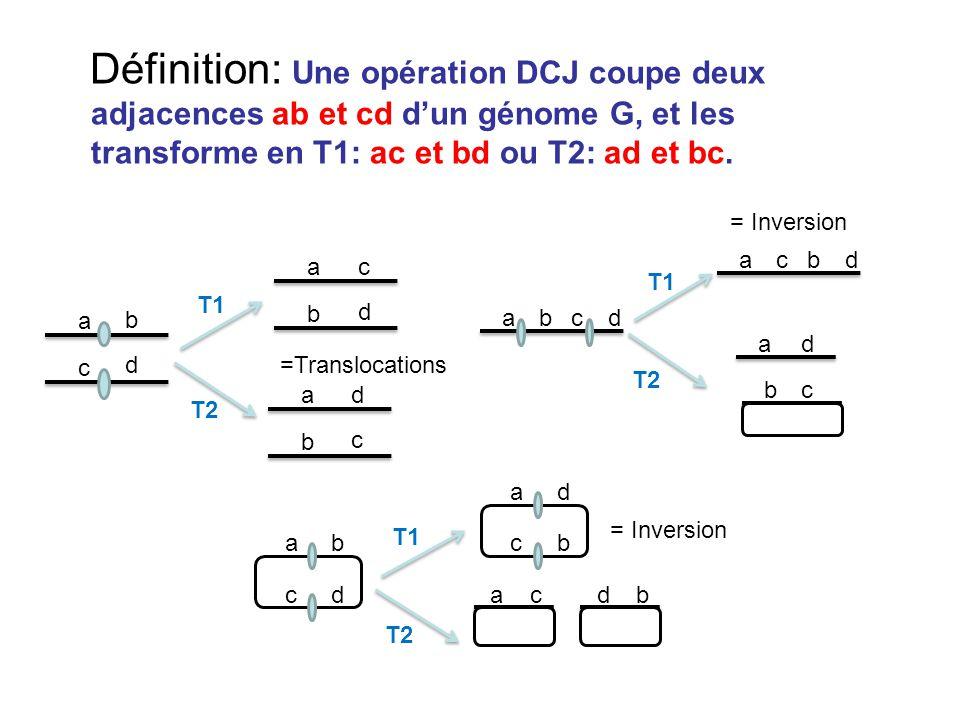 Définition: Une opération DCJ coupe deux adjacences ab et cd d'un génome G, et les transforme en T1: ac et bd ou T2: ad et bc.