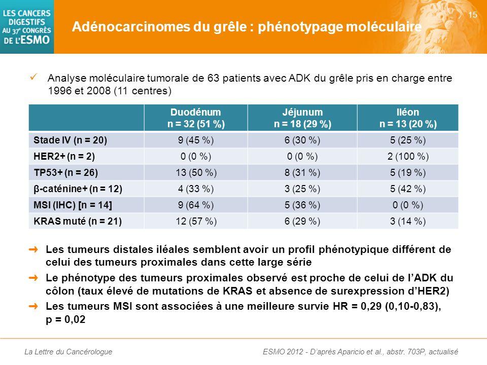 Adénocarcinomes du grêle : phénotypage moléculaire