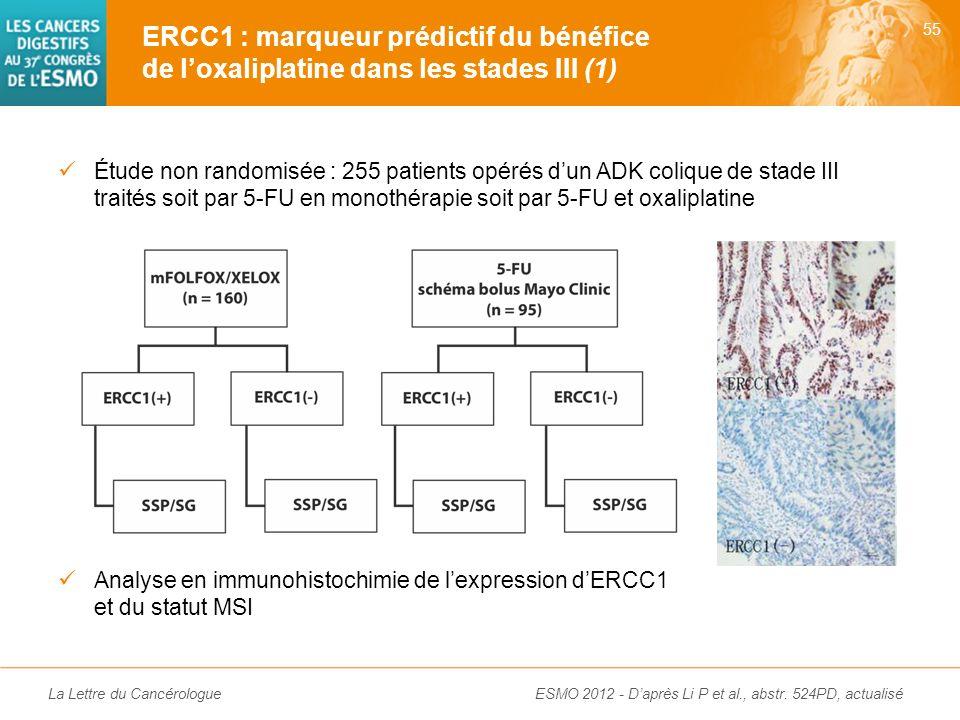 ERCC1 : marqueur prédictif du bénéfice de l'oxaliplatine dans les stades III (1)