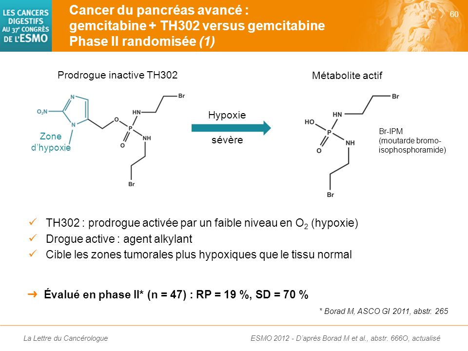 Cancer du pancréas avancé : gemcitabine + TH302 versus gemcitabine Phase II randomisée (1)