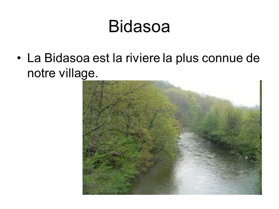 Bidasoa La Bidasoa est la riviere la plus connue de notre village.
