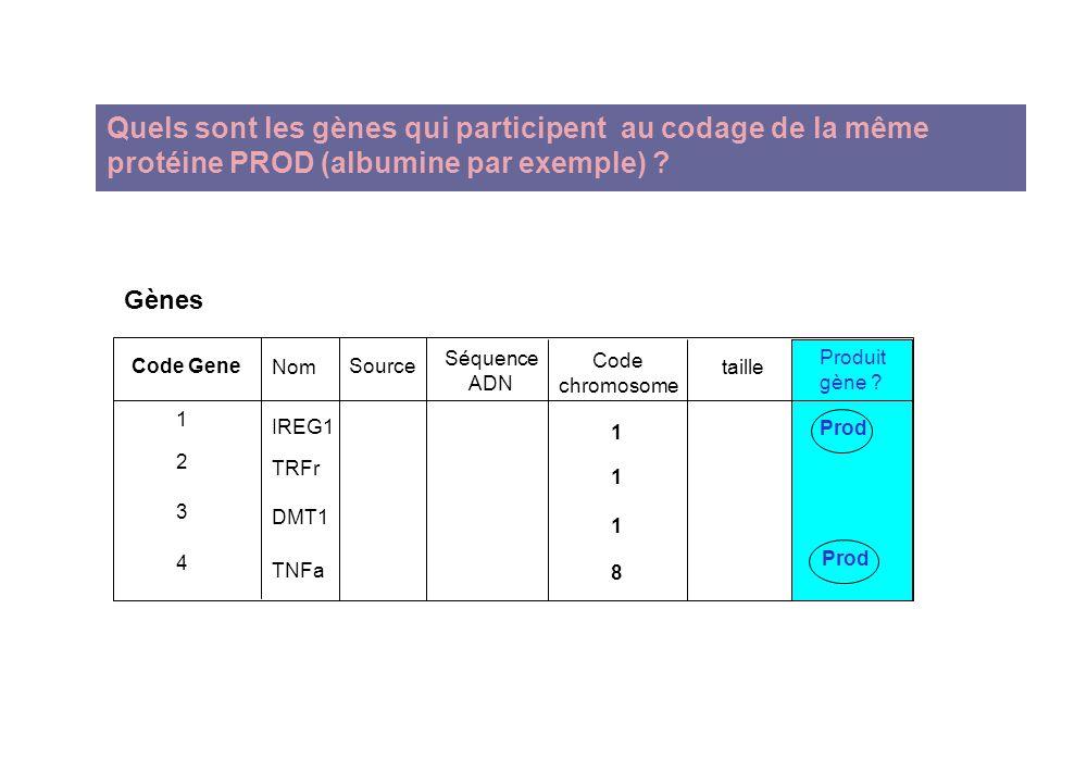 Quels sont les gènes qui participent au codage de la même protéine PROD (albumine par exemple)