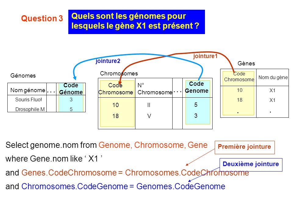 Quels sont les génomes pour lesquels le gène X1 est présent