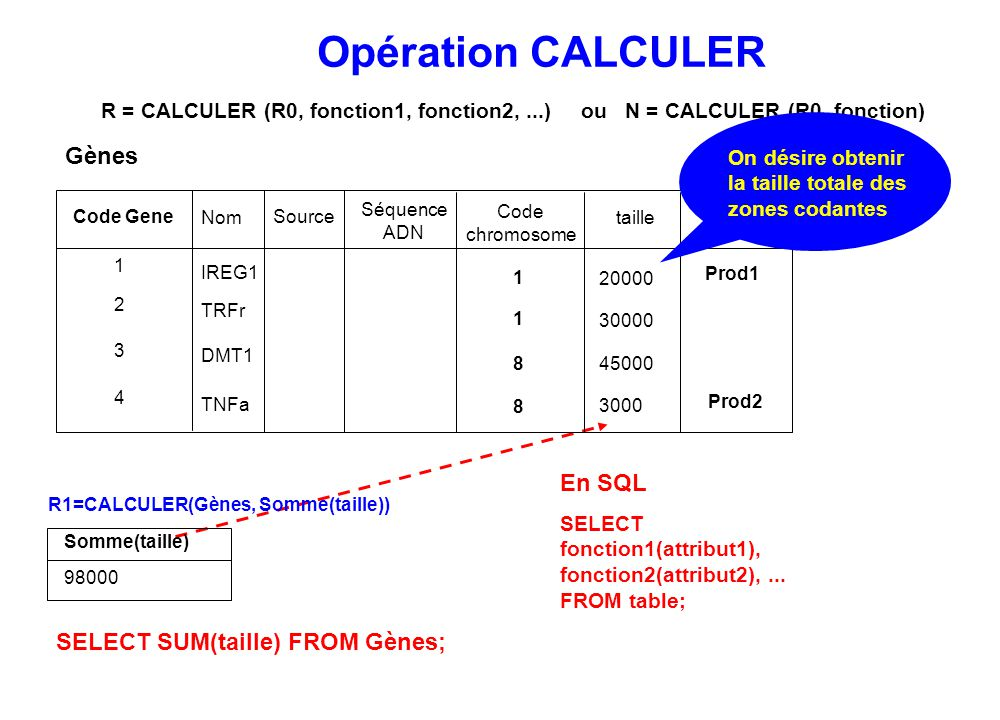 R1=CALCULER(Gènes, Somme(taille))