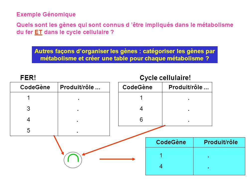  FER! Cycle cellulaire! Exemple Génomique