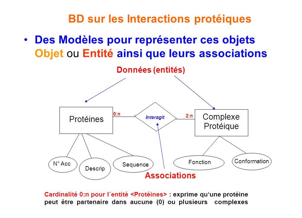 BD sur les Interactions protéiques