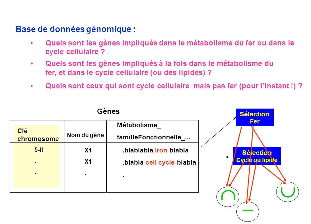 Sélection Cycle ou lipide