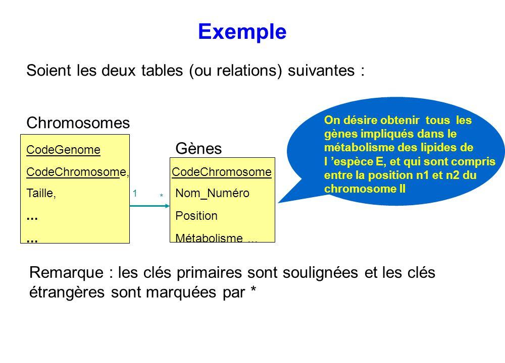 Exemple Soient les deux tables (ou relations) suivantes : Chromosomes