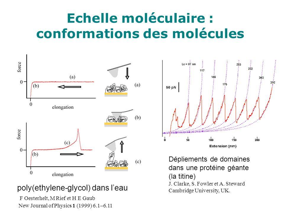 Echelle moléculaire : conformations des molécules