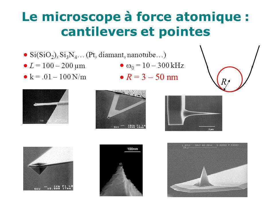 Le microscope à force atomique : cantilevers et pointes