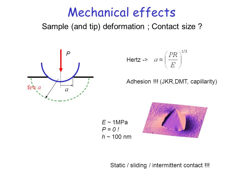 Mechanical effects Sample (and tip) deformation ; Contact size a P