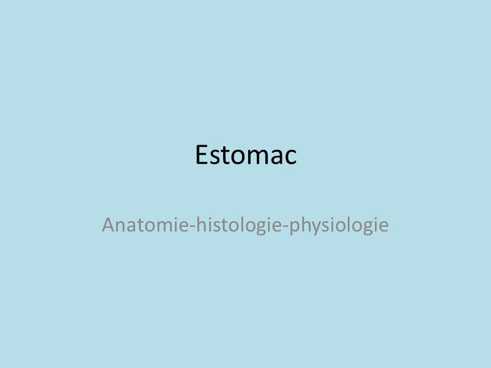 Anatomie-histologie-physiologie