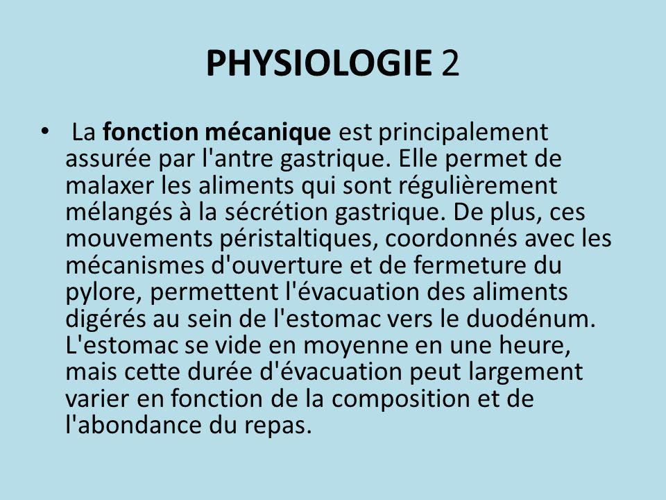 PHYSIOLOGIE 2