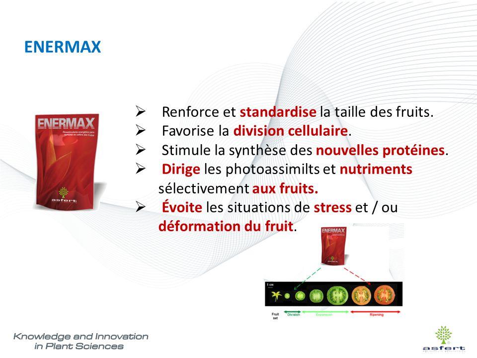 ENERMAX Renforce et standardise la taille des fruits.