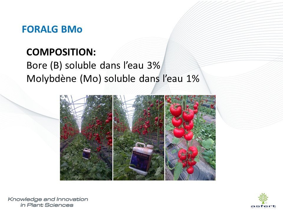 FORALG BMo COMPOSITION: Bore (B) soluble dans l'eau 3% Molybdène (Mo) soluble dans l'eau 1%