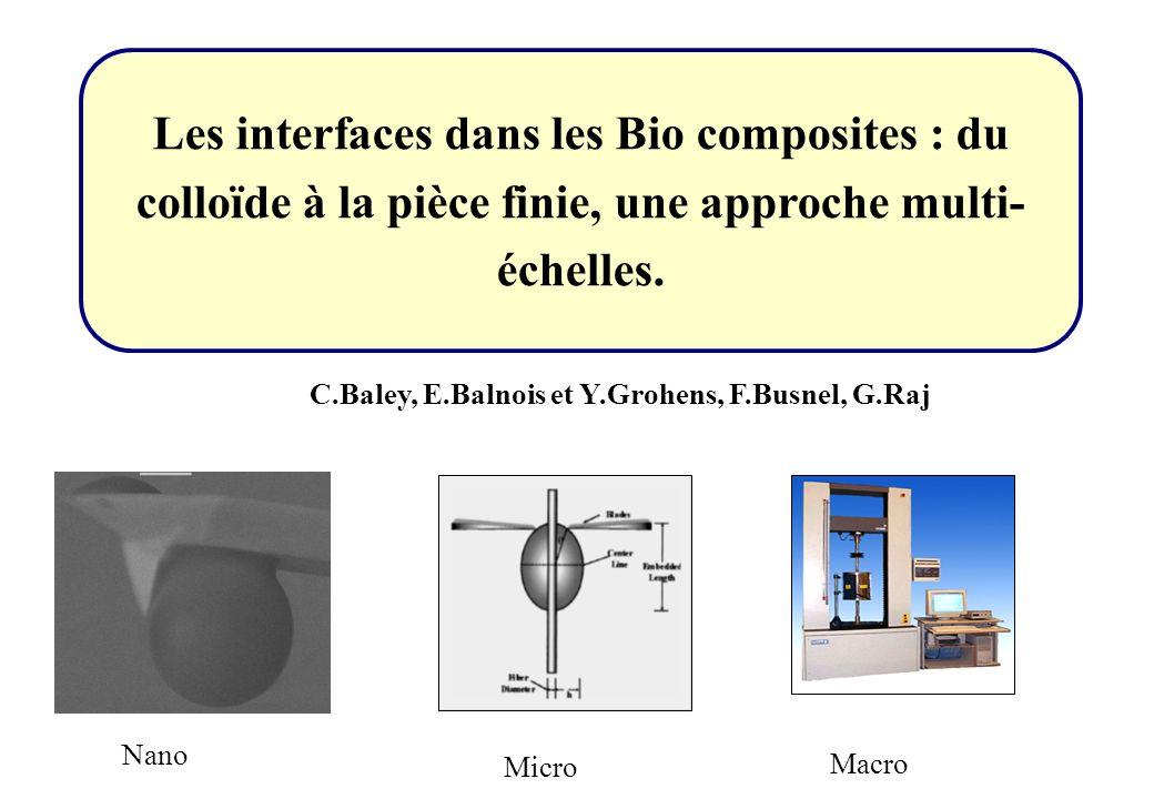 Les interfaces dans les Bio composites : du colloïde à la pièce finie, une approche multi-échelles.