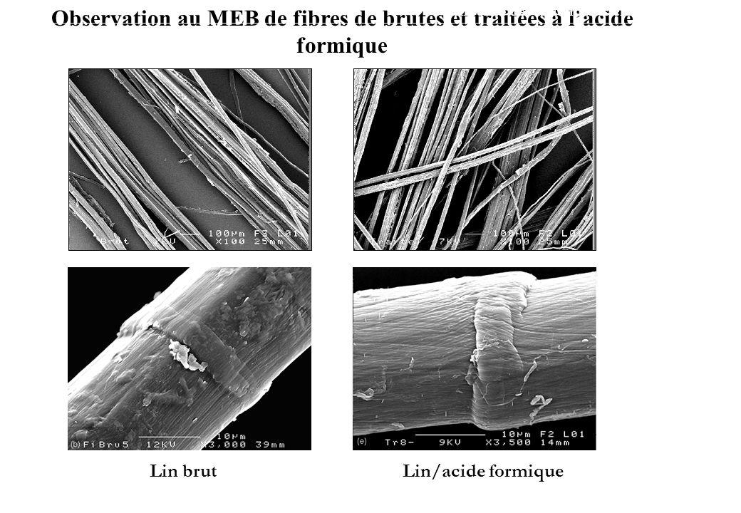 Observation au MEB de fibres de brutes et traitées à l'acide formique