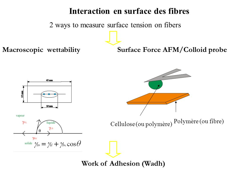 Interaction en surface des fibres