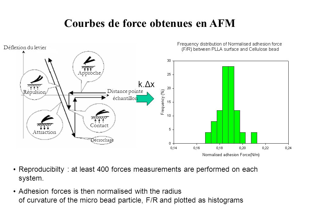 Courbes de force obtenues en AFM