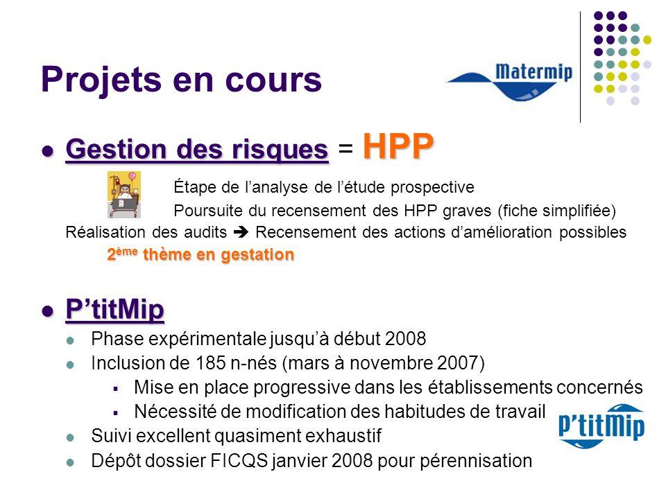 Projets en cours Gestion des risques = HPP P'titMip