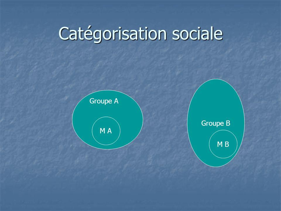 Catégorisation sociale