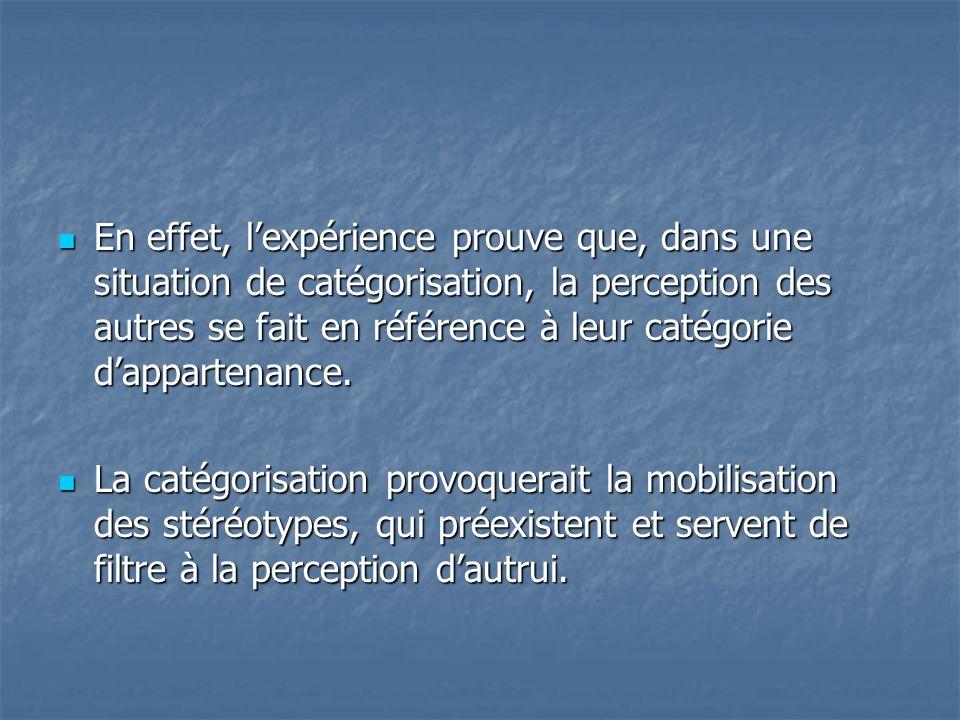 En effet, l'expérience prouve que, dans une situation de catégorisation, la perception des autres se fait en référence à leur catégorie d'appartenance.