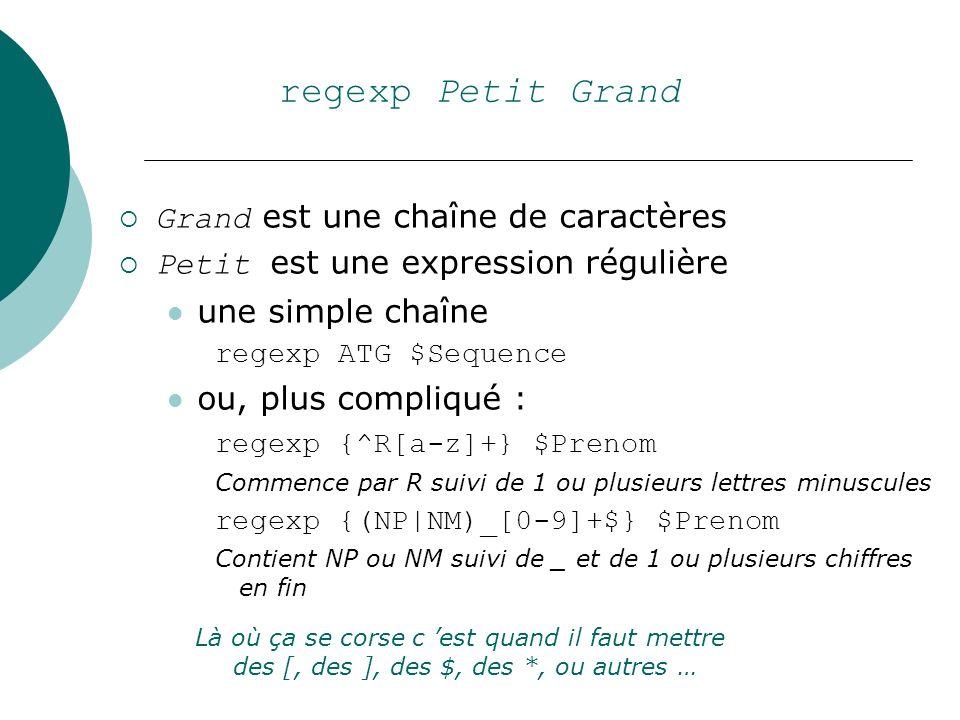 regexp Petit Grand Grand est une chaîne de caractères