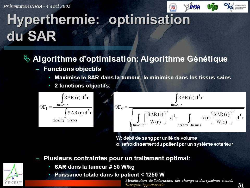 Hyperthermie: optimisation du SAR