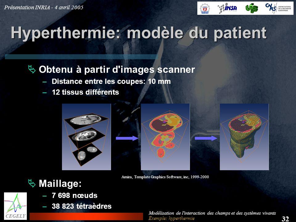 Hyperthermie: modèle du patient