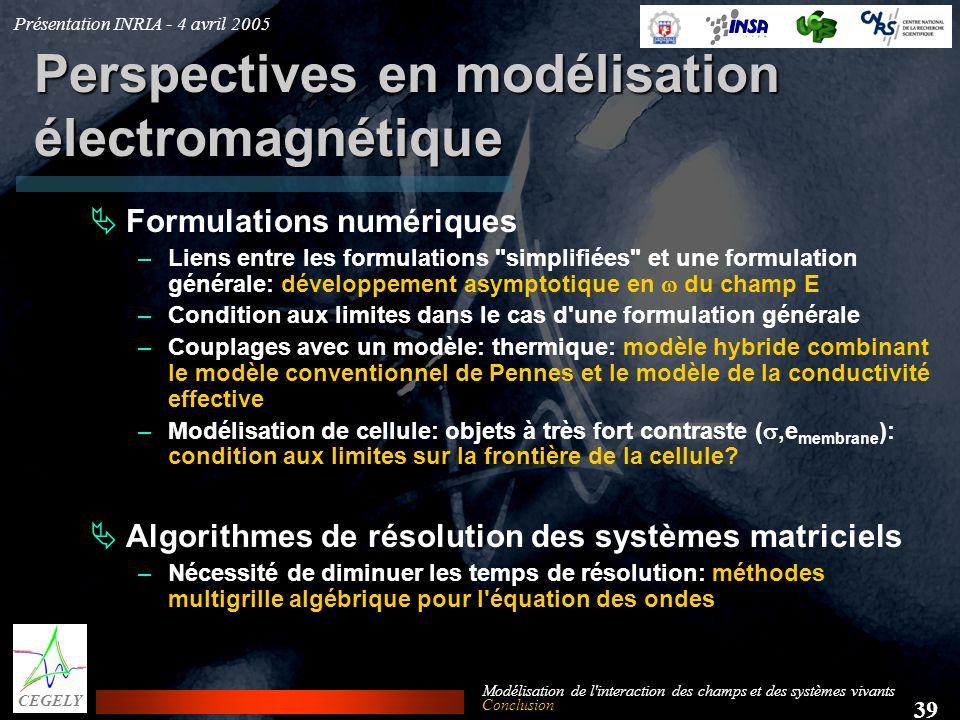 Perspectives en modélisation électromagnétique
