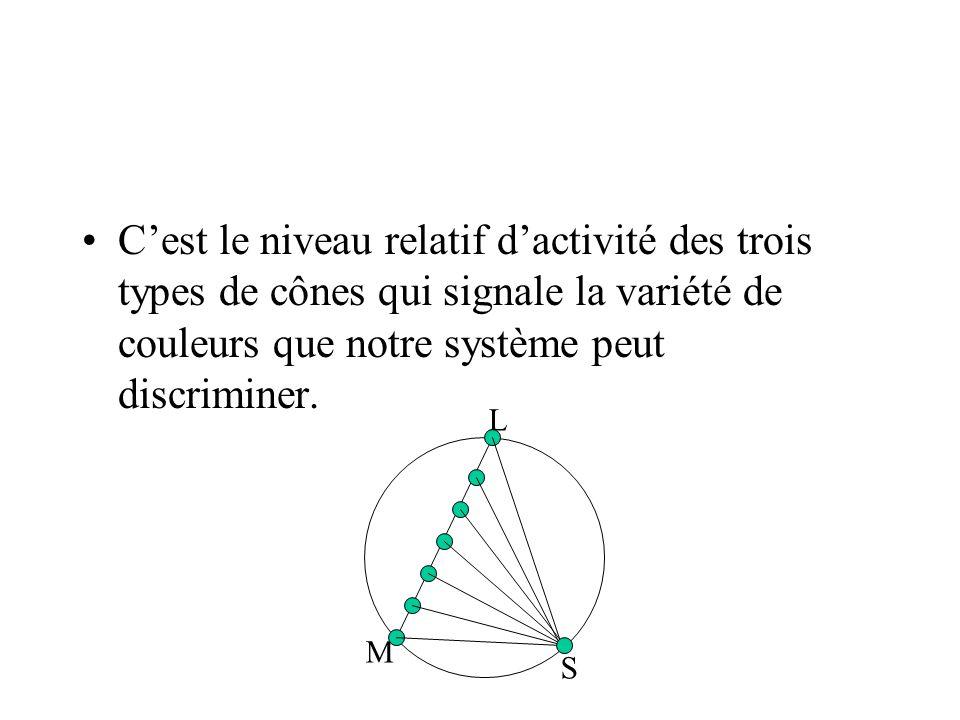 C'est le niveau relatif d'activité des trois types de cônes qui signale la variété de couleurs que notre système peut discriminer.