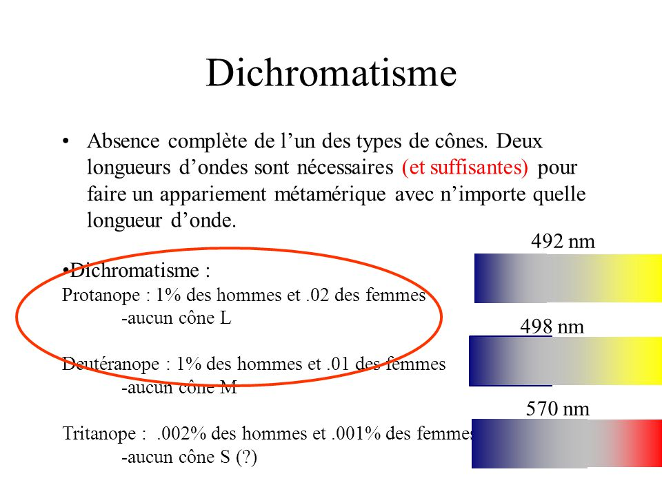 Dichromatisme