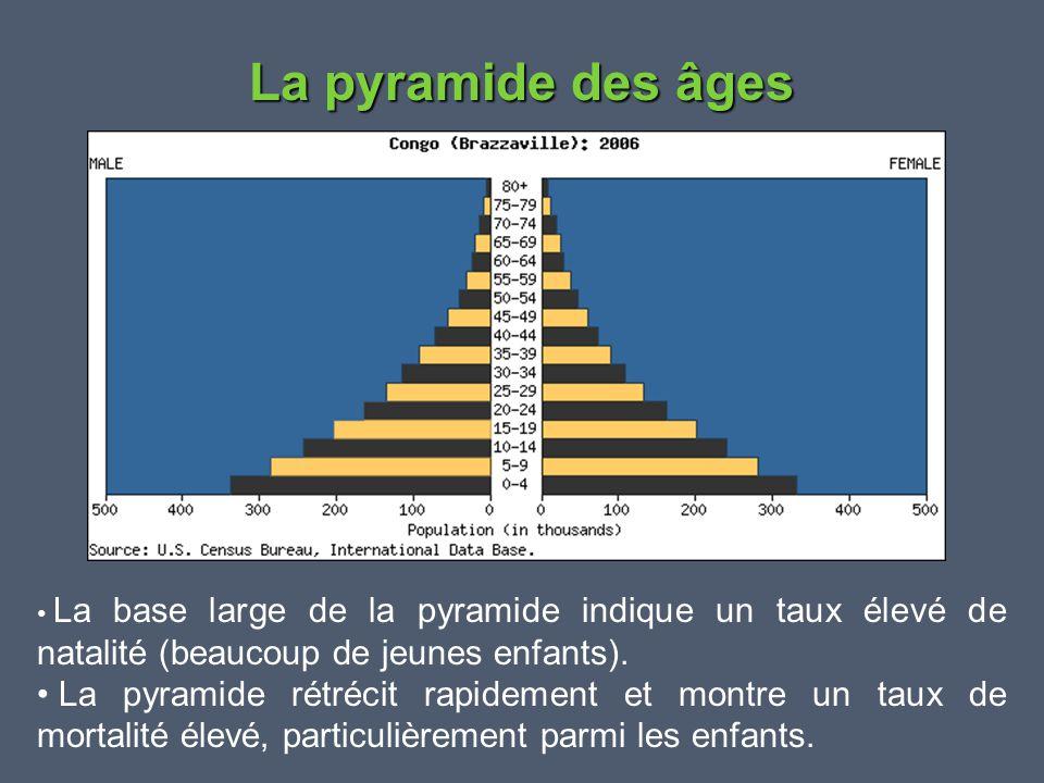 La pyramide des âges La base large de la pyramide indique un taux élevé de natalité (beaucoup de jeunes enfants).