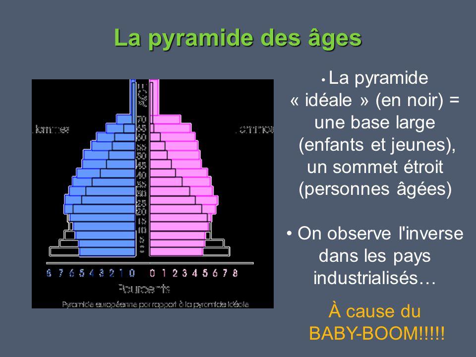 La pyramide des âges « idéale » (en noir) = une base large