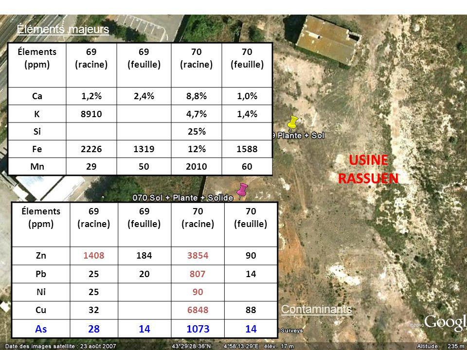 USINE RASSUEN Éléments majeurs As 28 1073 Contaminants Élements (ppm)