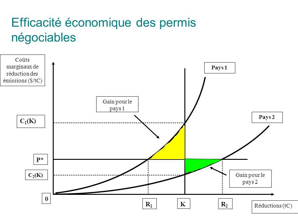Efficacité économique des permis négociables