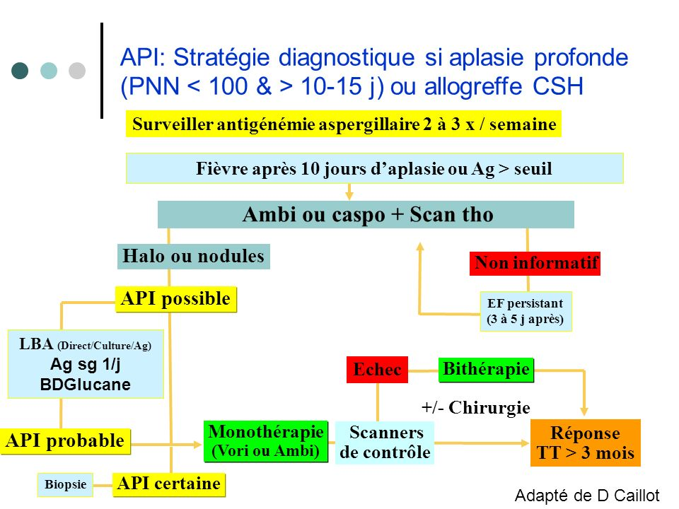 API: Stratégie diagnostique si aplasie profonde (PNN < 100 & > 10-15 j) ou allogreffe CSH