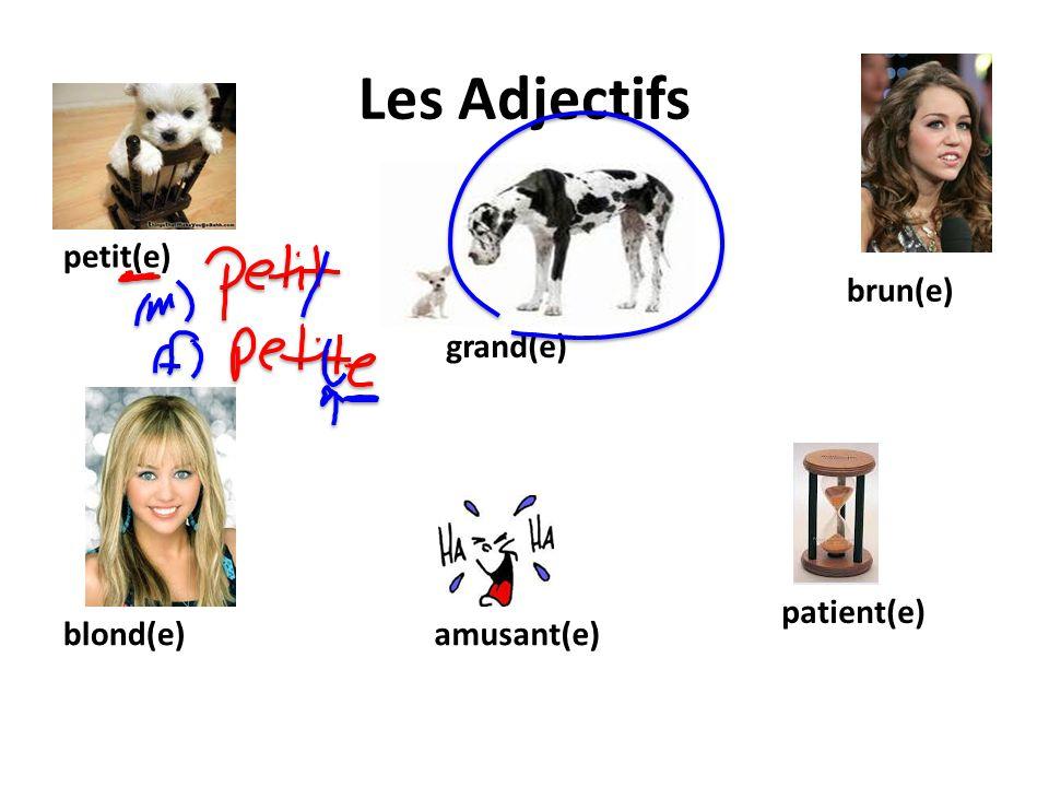 Les Adjectifs petit(e) brun(e) grand(e) patient(e) blond(e) amusant(e)