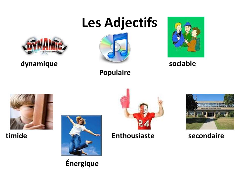 Les Adjectifs dynamique sociable Populaire timide Enthousiaste