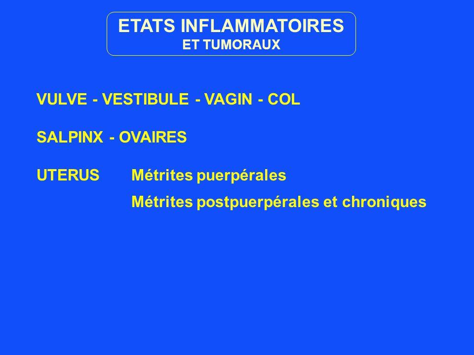 ETATS INFLAMMATOIRES VULVE - VESTIBULE - VAGIN - COL SALPINX - OVAIRES