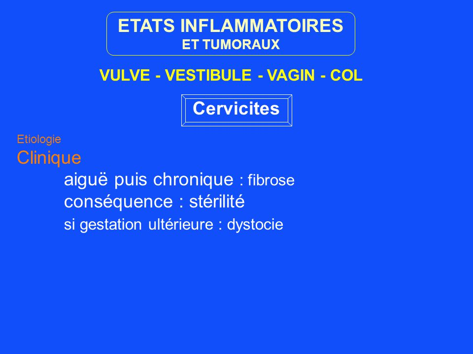 ETATS INFLAMMATOIRES Cervicites