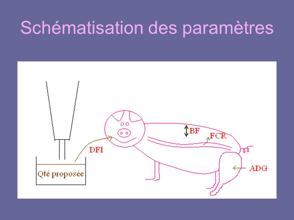Schématisation des paramètres