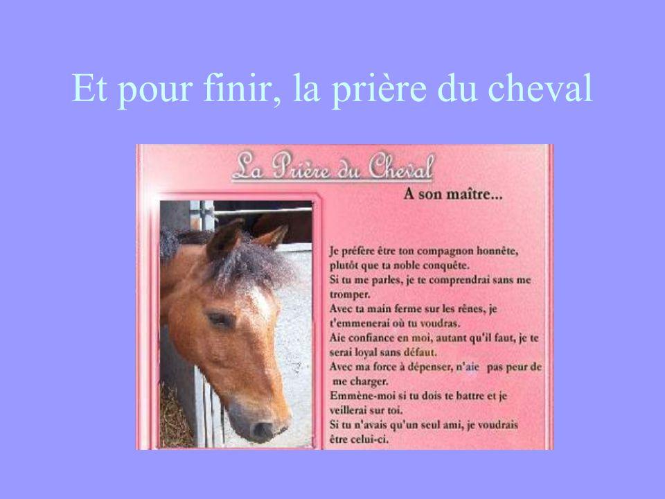 Et pour finir, la prière du cheval