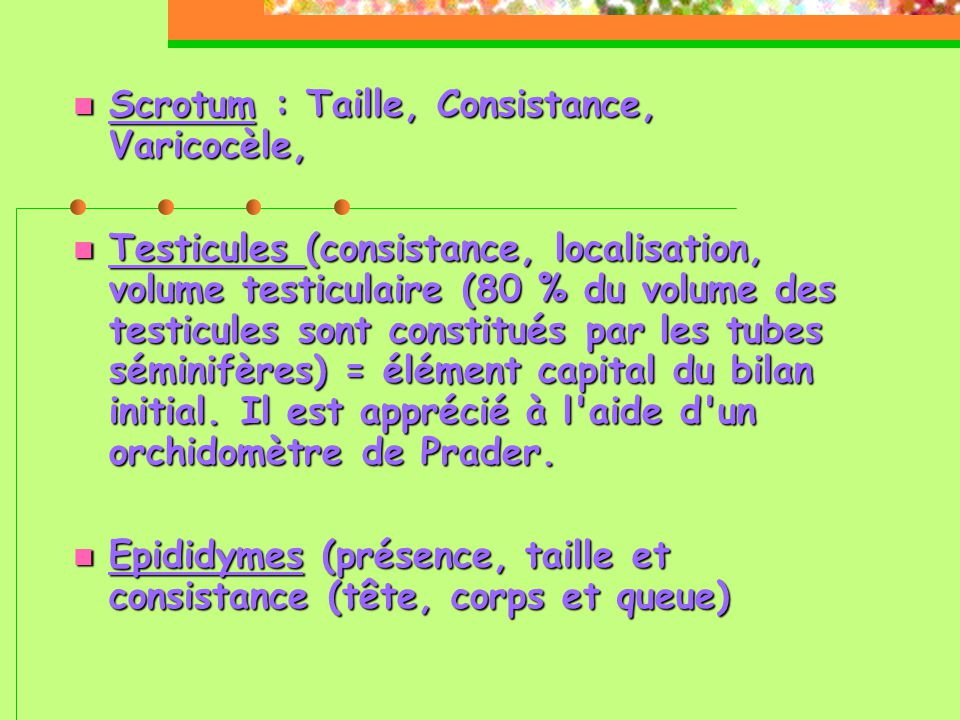 Scrotum : Taille, Consistance, Varicocèle,