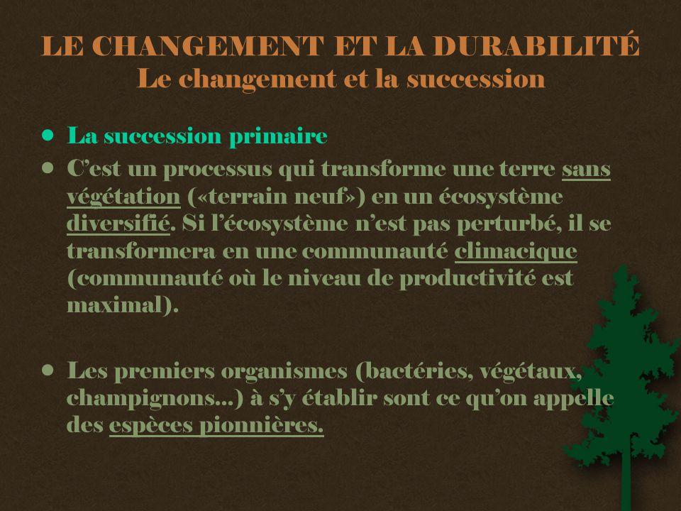 LE CHANGEMENT ET LA DURABILITÉ Le changement et la succession